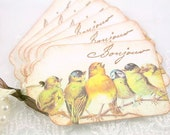 Singing Birds Gift Tags - French Bonjour