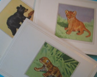 3 Little Cubs Cards