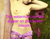 Old VINTAGE Antique FLORAL FRENCH NUDE Photo Reprint ...Mature