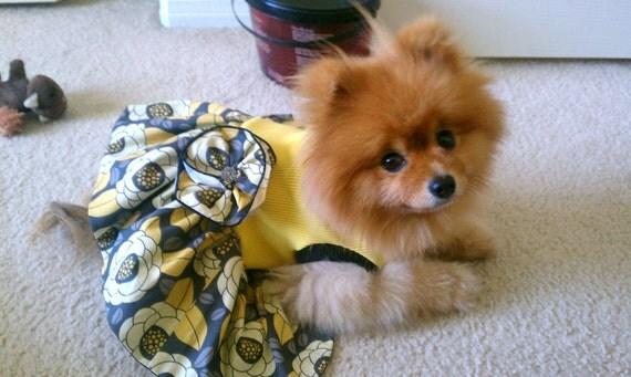 Dog Dress - Lemon Dream Dress To Order Sizes XSmall, Small, Medium