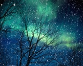 Nature photography winter photography northern lights snow photo blue green starry night falling night zodiac astrology - Aurora 8x10 - bomobob