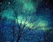 Photographie d'aurores nature photographie hiver neige photo bleu nuit étoilée vert chute nuit du zodiaque astrologie