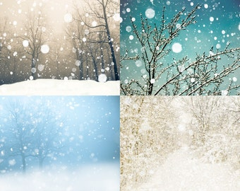 Snow photography, winter photography, canadian forest, winter white, snow trees snowflake pastel woodland  - 4 5x7 Prints