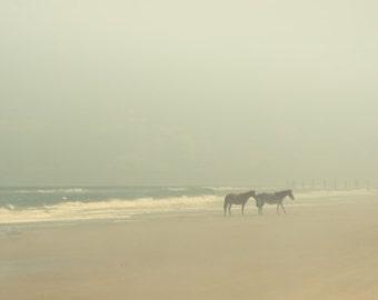 Horse art, wild horses, horse photography, atlantic ocean, ocean mist equine equestrian beach photo neutral foggy rain  - Fog 8x10
