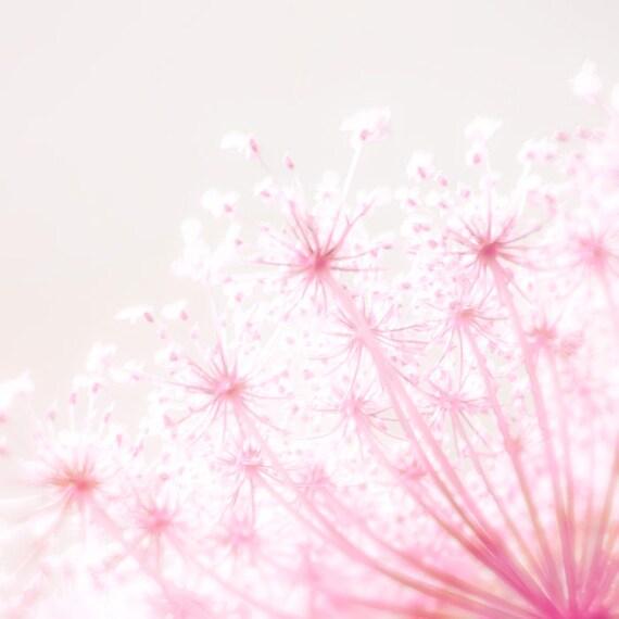 Nature photography , pink decor, spring photography, flower print, art for nursery, feminine, dusty rose honeysuckle - Pink Popcorn 8x8