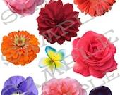 Flower Heads Collage Sheet 1