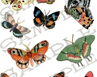 Butterfly Collage Sheet 2B