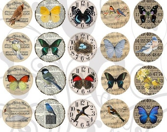 Birds n Butterfly Circle Backgrounds Collage Sheet 1