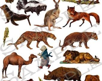 Wild Animals Collage Sheet 1wa
