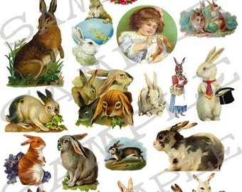 Rabbits Bunnies and Hares Collage Sheet 4rbh