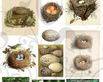 Collage Sheet Nest 22 You Will Get  A Jpeg Sheet  As Well As Individual imaes and Pngs