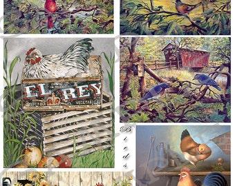 Vintage Birds Collage Sheet 99d Instant Download