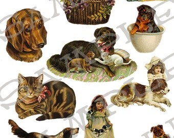 Pets Collage Sheet 1p