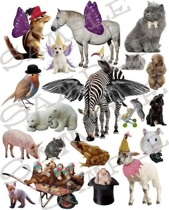 Fun With Animals Collage Sheet 1AF