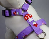 Dog Harness - Toadstools