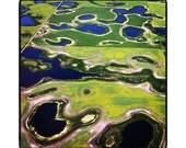 Aerial Photograph - Farmland