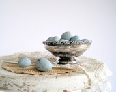 Decorative Robins Eggs Blue Faux Artificial Easter Eggs