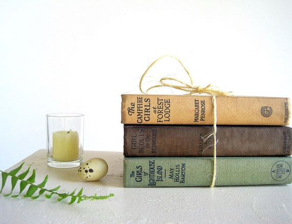 RESERVED FOR C.  Until FRIDAY Morning Instant Collection Vintage Outdoor Adventure Novels