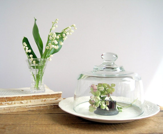Vintage Glass Dome Cloche Terrarium Display / Cottage Chic / Antique Ironstone Plate