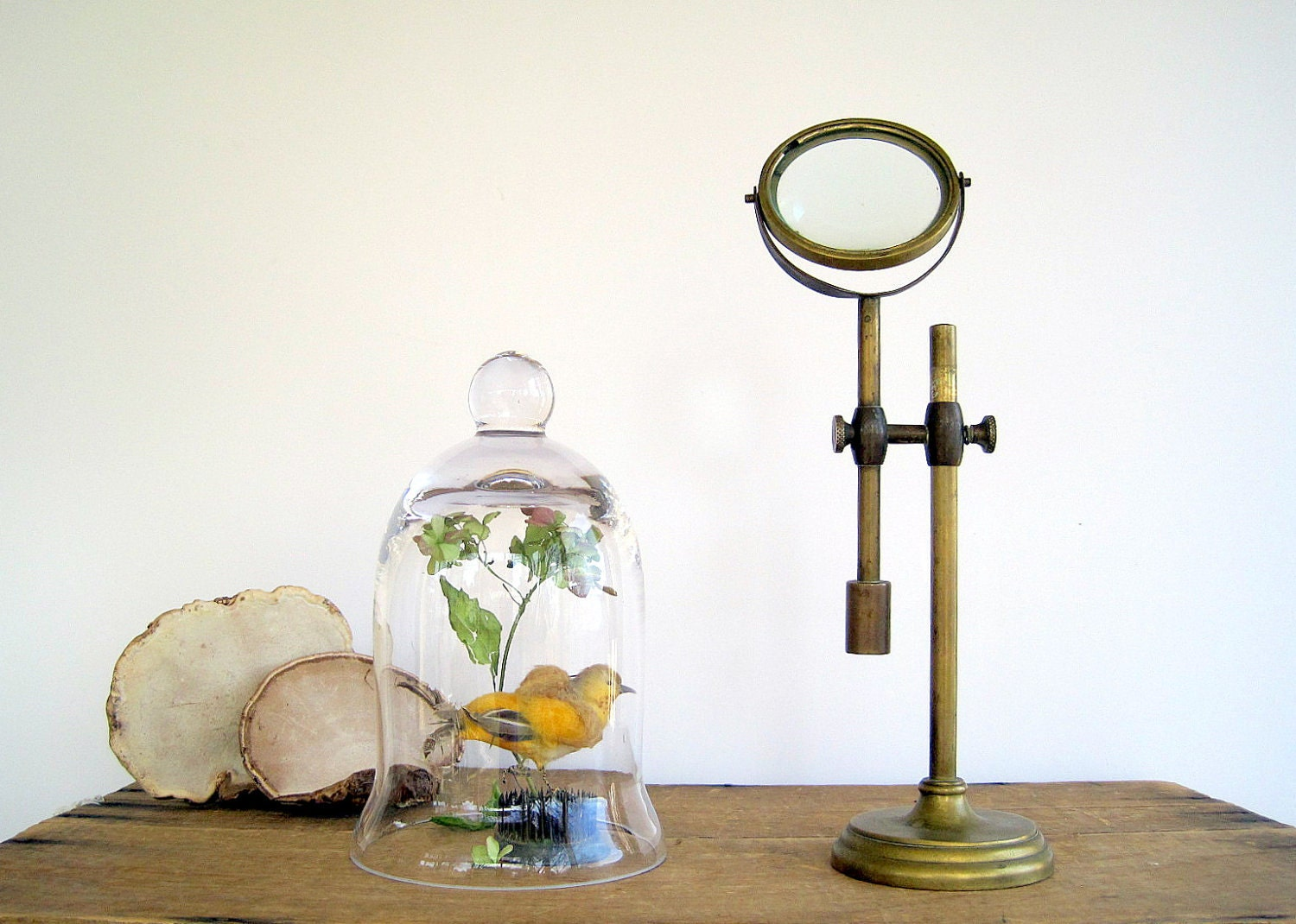 Magnifying Glass On Adjustable Brass Stand Industrial