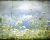 Cloudy Day Queens - 20x30 Fine Art Photograph Gallery Wrap