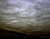 Mad Sky - 4x6 Fine Art Photograph