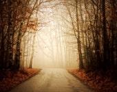 Silent Path - 10x15 Fine Art Photograph