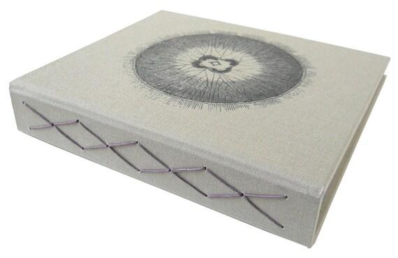 sand bacteria book