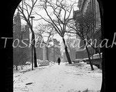 Winter on Commonwealth Avenue in Boston, Massachusetts  1971