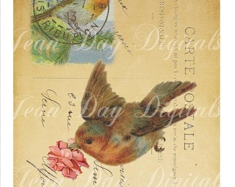 Bird, Robin delivering a Rose - Large image - French Postcard Collage Sheet Instant Download -French Script TL003