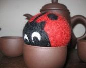 Wooly Ladybug Felted Ball