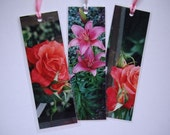 Girl Guide Rose. Set of 3 Laminated Photo Bookmarks. Great Gift Idea.