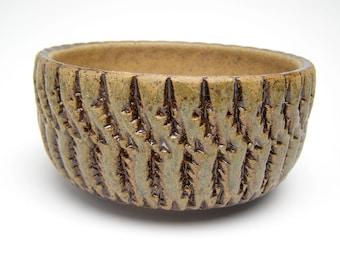 handmade succulent planter pot cactus planter stoneware planter ceramic planter herb planter pottery plant pot  6 x 3 Free shipping Erp 28