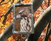 Wild Spirit Redtailed Hawk Oriel Pendant