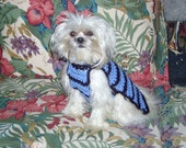 SHOW TIME - Beautiful classic striped sweater for your boy - 2 to 20 lb dogs