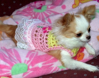 SASSY IN LACE sweater with 3 inch lace - up to 20 lb dogs- made to order