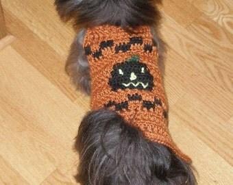 MIDNIGHT JACK O'LANTERN - Halloween Fall Sweater -2 to 20 pounds