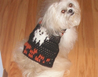 B O O - Halloween dog sweater - 2 to 20 lb dogs - He's a friendly ghost