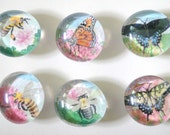 Bees and Butterflies set of Glass Thumbtacks or Magnets