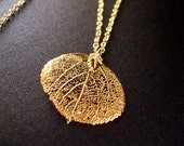 24K Gold Aspen Leaf on a 14K Gold Plated Chain