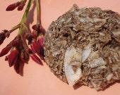 Raw Vegan Organic MACA-Roons (tm)  Living Foods with Super Powers