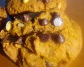 Vegan Gluten and Soy Free Pumpkin Chocolate Chip Walnut Muffins   Half Dozen