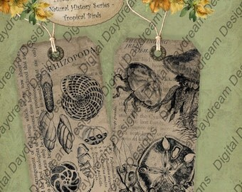 Instant Download Digital Printable Collage Sheet Gift or Scrapbook Journaling Tag Set - Down by the Sea