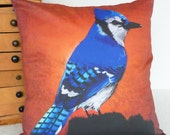 Pillow of the Blue Jay of the Adirondacks-- Insert included 16x16inch 40x40cm