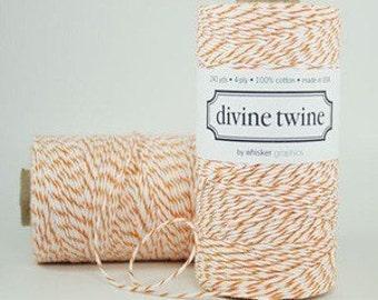 Divine Twine Orange