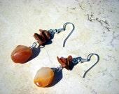 Orange Agate & Goldstone Wire-wrapped Earrings