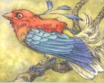 Fruity Birdy