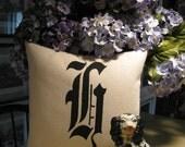 Large Letter pillow