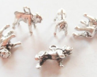10 Bull Dog Charms (3D) 15x14mm Item:D21
