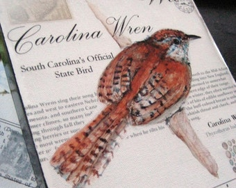 South Carolina Wren on Canvas - 8x10